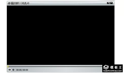 flash视频器播放器代码