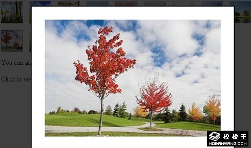 纯CSS实现的点击显示大图背景变灰图片特效代码